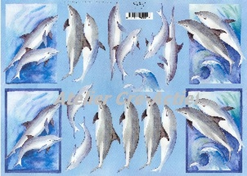 Quincy 3D knipvel Dolfijnen  A4