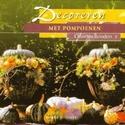 Boek: Decoreren met Pompoenen, Christien Reinders Paperback 20cm