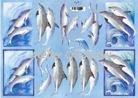 Quincy 3D knipvel Dolfijnen