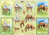 Quincy 3D knipvel Paarden