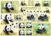 Quincy 3D knipvel Panda Beren A4