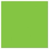 Mosa wandtegel 17900 Macaw Green (appelgroen)