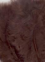 VEREN: Marabou veren Bruin H&C Fun 12228-2814 15stuks/ca.12cm