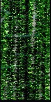 Chenille draad H&C12218-1836 Glitter Groen 8mm