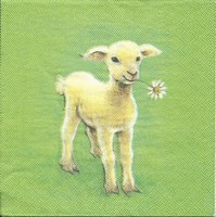 Servet: Lammetje op groene achtergrond Molca Design OP=OP