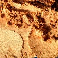 Color-Tricx 0103 metallic pigmentpoeder Richgold