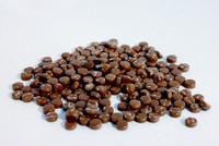 Glasmozaiek Colourful Dots  75gram 1011025 Bruin 75 gram