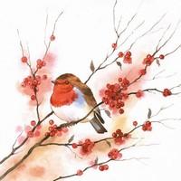 Servetten Ambiente 111330_4435 Birdy Robin 33x33cm/5stuks