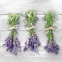 Servetten Ambiente 1330_8541 Lavendel hangend