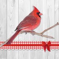 Servetten Ambiente 1330_8780 Kardinaal vogel