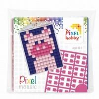 Pixelhobby 23002 medaillon startset Varkentje