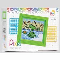 Pixelhobby geschenkverpakking 31264 Kikkers