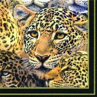 Ihr servet L 385807 (5x)Mystery moments black (luipaarden)