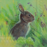 Ihr servet L 599200 (5x) Rabbit in the Meadow