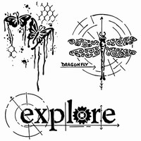 Stencil TCW566 template Winged Exploration art.3603-672 12inch/30x30cm