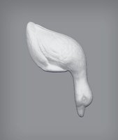 Styropor eend/gans