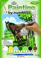 Painting by numbers R&L PJS21-3T Merrie en veulen