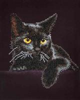 Diamond Dotz DD 5.001 Midnight Cat  27,9x35,5cm