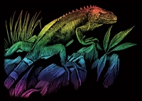Krasfolie pakket 105 multicolor Iguana / Leguaan