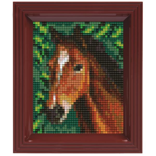 NIEUW Pixelhobby classic pakket  31318 Paard
