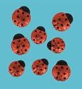 Add-ies 6380-0017 Glitter Ladybugs 8 stuks OP=OP