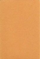 12274-7419 Synthetisch Vilt Camel 1mm H&C Fun